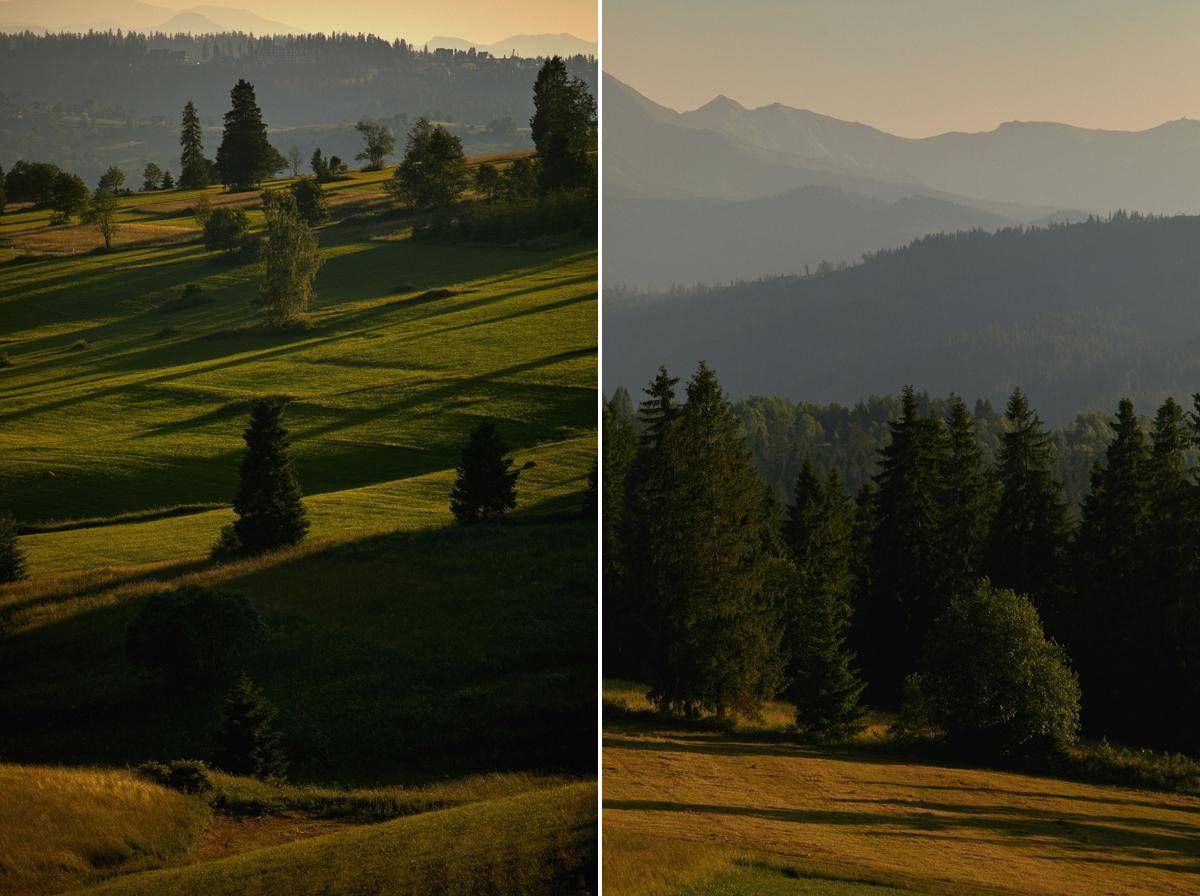 łąki w małopolskce