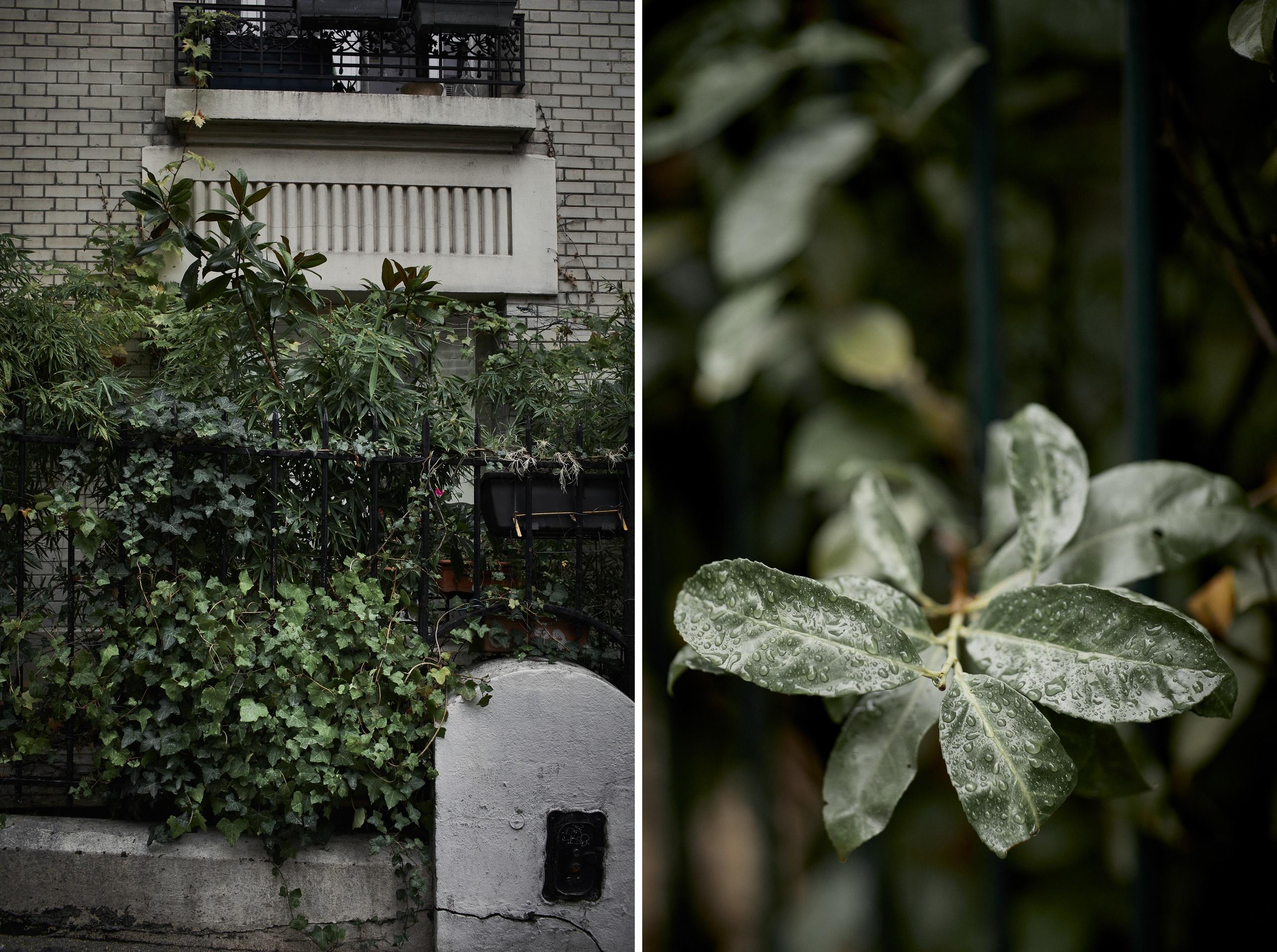 sesja ślubna za granicą - Maison Rose w dzielnicy Montmartre